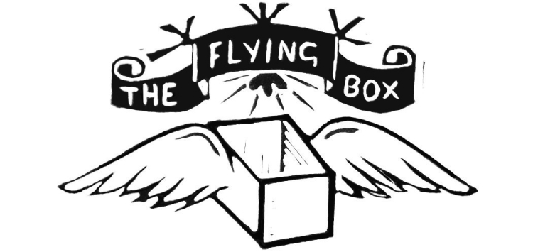 Flying box logo
